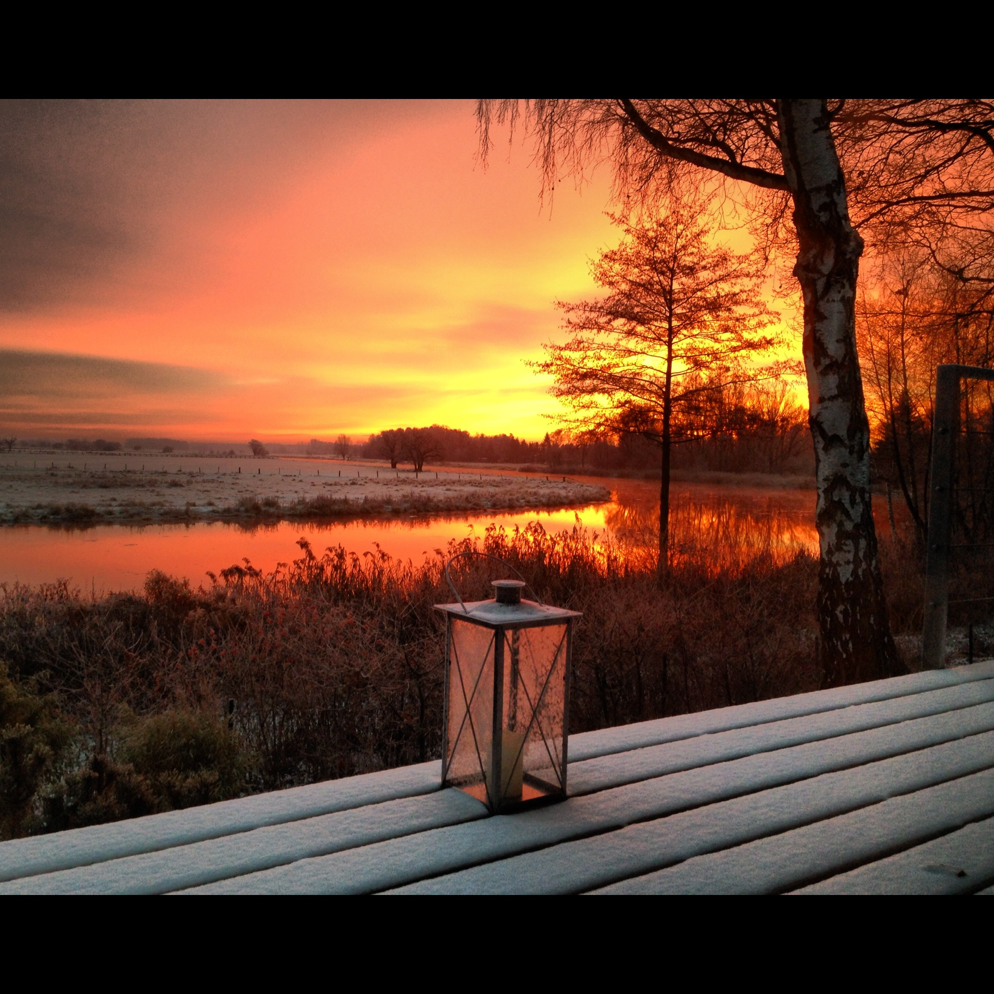 Winter In Der L 252 Neburger Heide Ferienhaus In Der