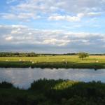 Natur - Fotos Ferienhaus Heide - Heide Ferienhaus Fotos